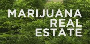 MarijuanaRealEstateAgent